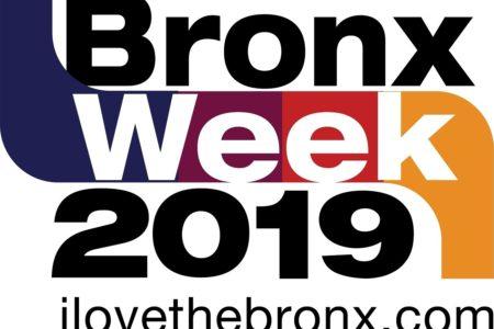 The 2019 Bronx Ball