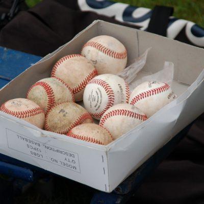 Borough President's Cup Youth Baseball Family Celebration