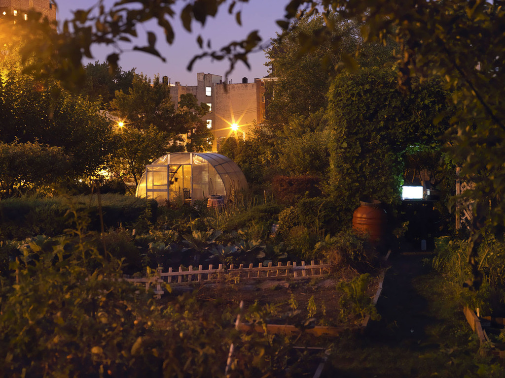 Nina Berman Presents Bronx Garden