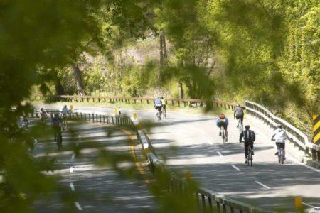 Bicycle Sundays Return To Bronx River Parkway