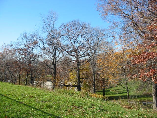 Autumn in Crotona Park