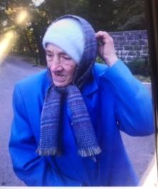 Diane Sevijan, 70, Missing