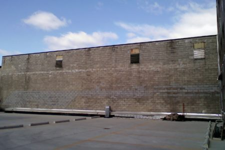 DreamYard & Bronx Pro Mural Project