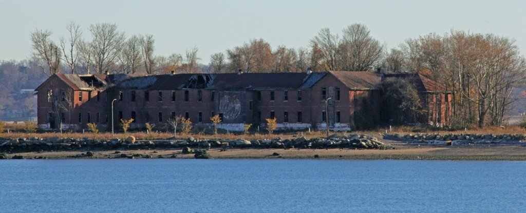 """Bronx's Crumbling """"Island of The Dead"""" Is Unearthing Its Nameless Skeletons"""