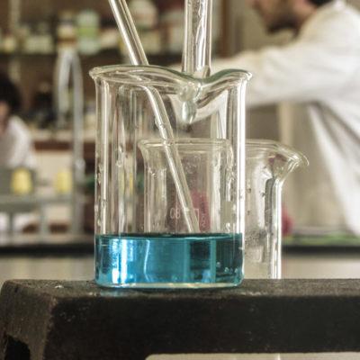 Simone Development Pushing For Biotech Boom In Bronx