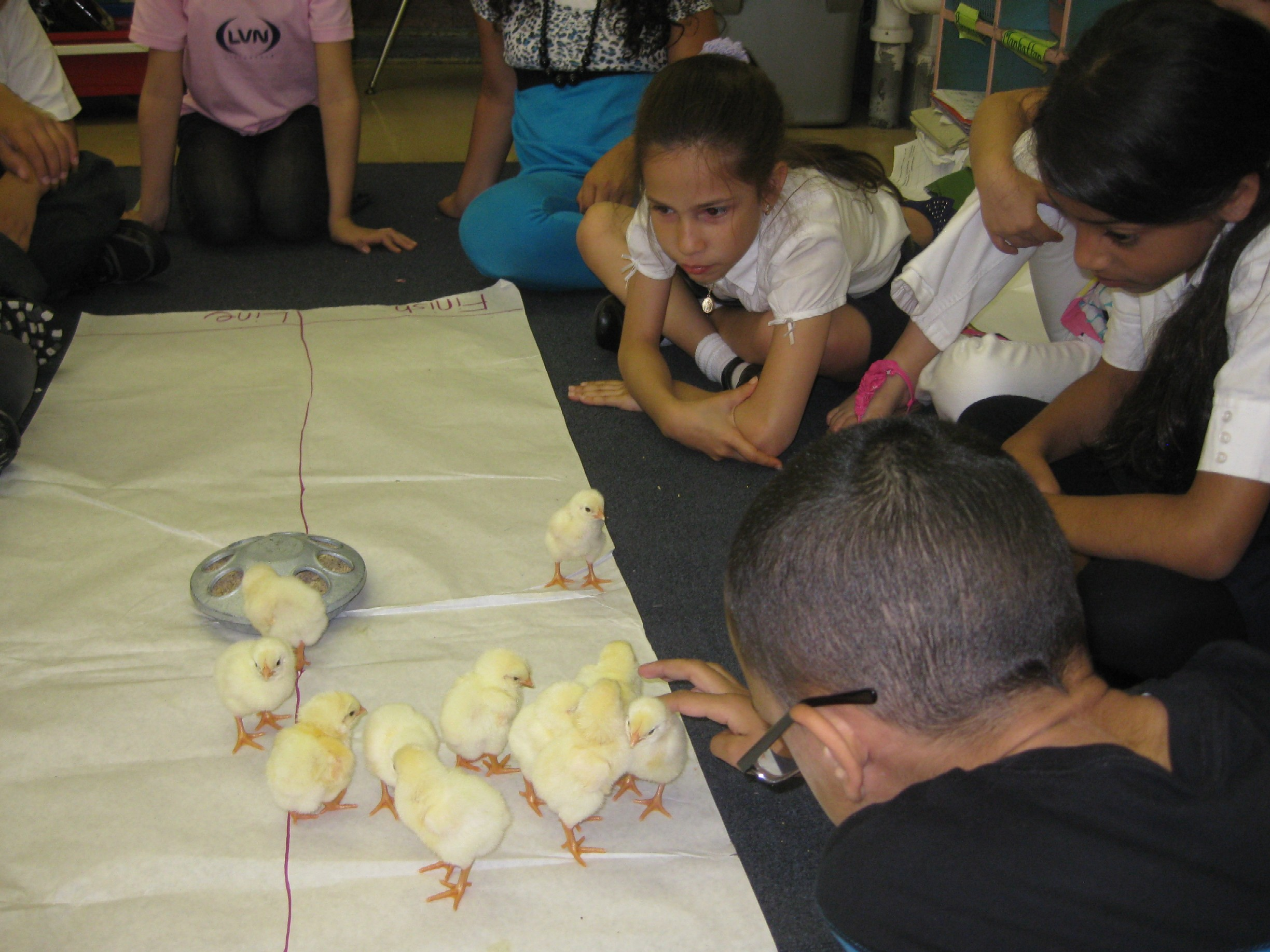 Hands-On Science For 2nd-Graders