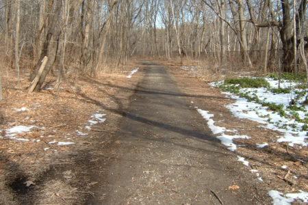 Save The Putnam Trail In Bronx