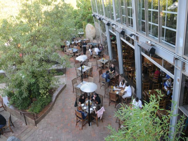Stone Brewing World Bistro & Gardens