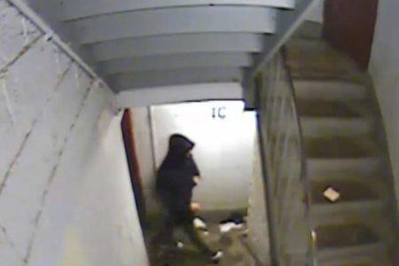 Bronx Creep Masturbates Next To Woman In Elevator