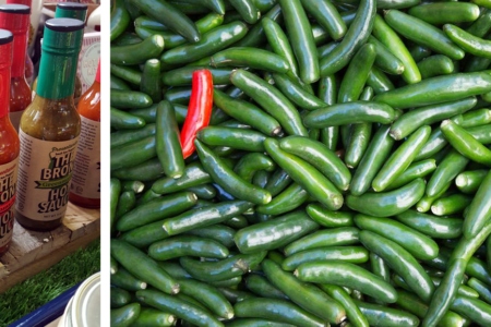 Bronx Community Gardens Grew And Sold 1,500 lbs+ Of Serrano Peppers