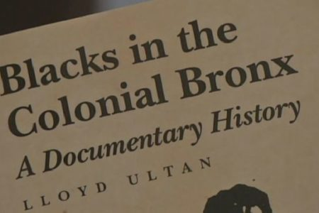Historian Examines Lives Of Slaves In Bronx