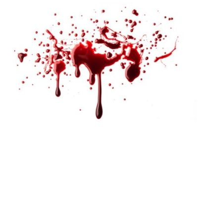 Blood Spills In The Bronx