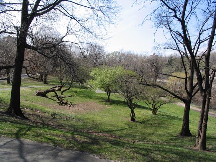 Bronx Park