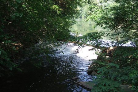 Settlement Money To Clean Bronx River