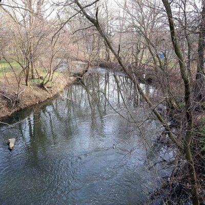 How To Polute A River