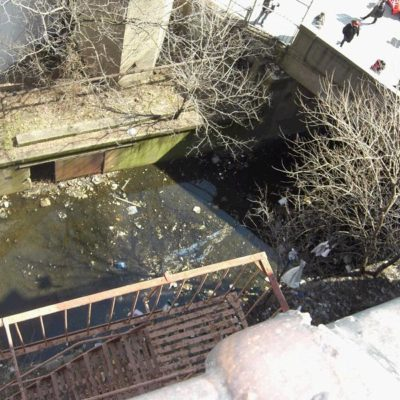 Bronx Swamp To Be Cleaned Up