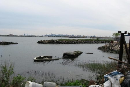 Townhall Meeting: Clason Point Park