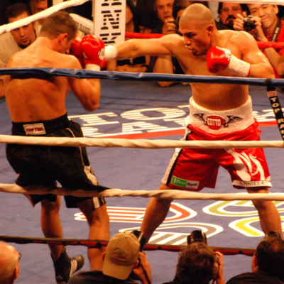 Cotto Thrills Thousands In Bronx