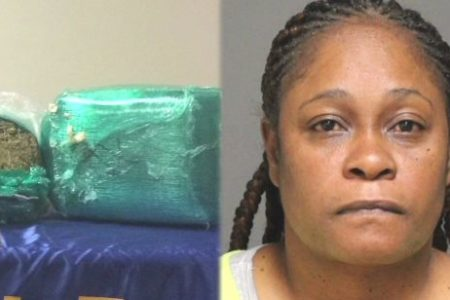 Bronx Woman Charged In Pot Bust