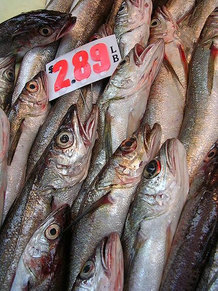 At the fish market.