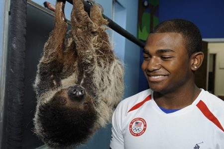 Bronx Olympian John Orozco Stops By Bronx Zoo