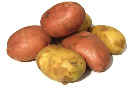 Keeping Potatoes Happy & Healthy