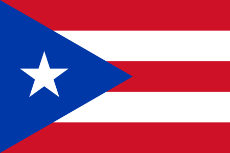 Puerto Rican Day Parade In New York