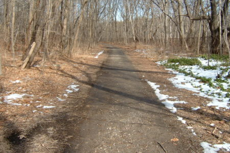 Save The Putnam Trail In Bronx