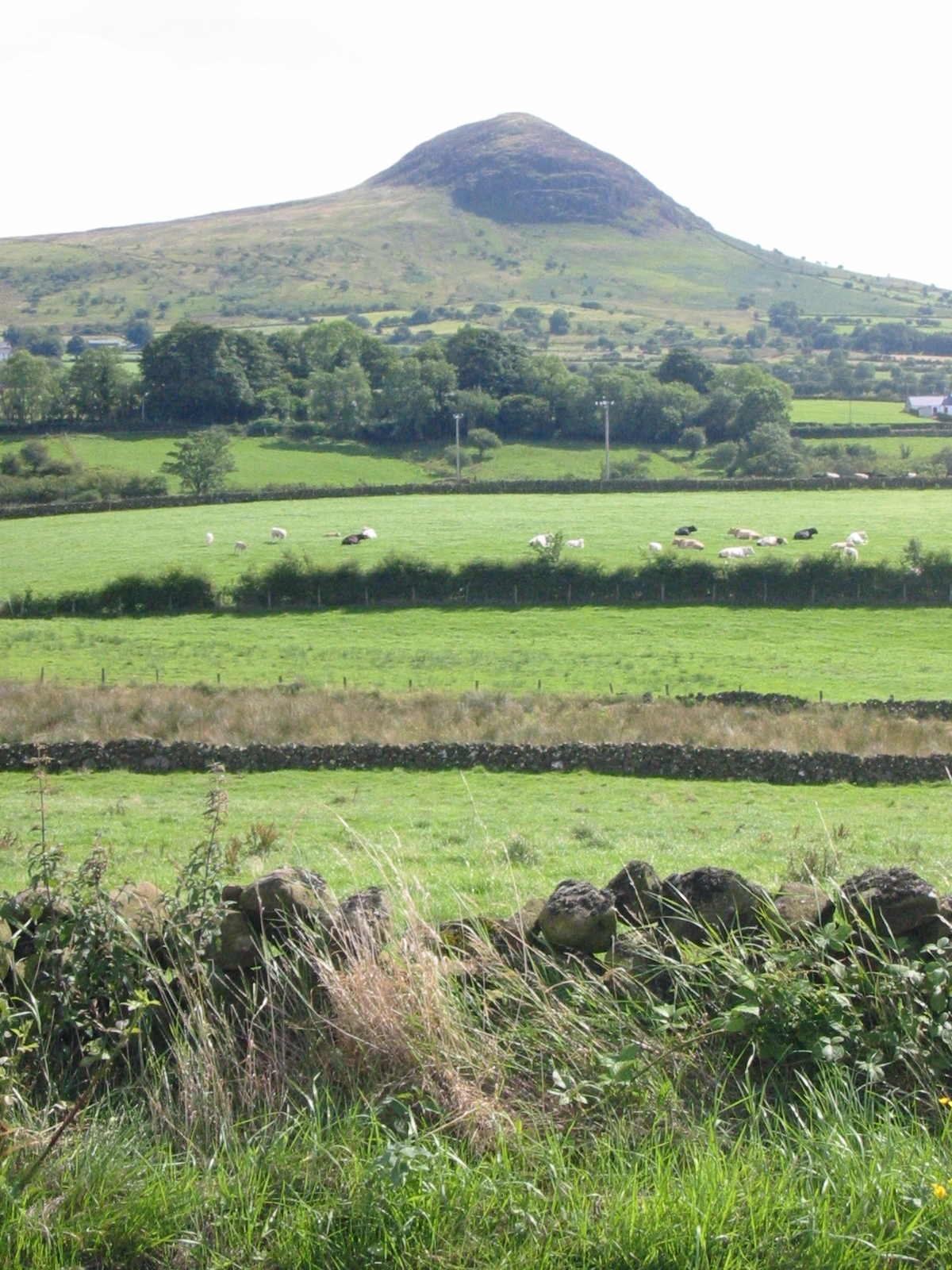 Slemish, County Antrim, where Patrick is said to have worked as a shepherd while a slave.