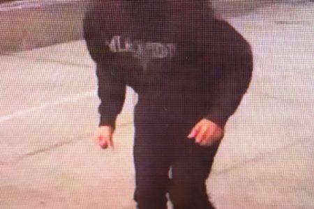Help Identify 4 Burglary Suspects