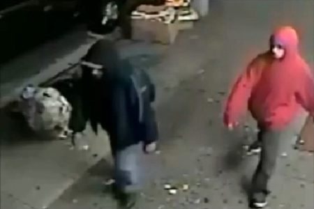 Men Robbed Woman, 83, Knocked Her To Floor In Bronx
