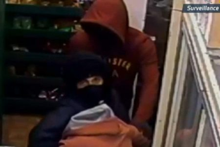 Bronx Duo In Armed Robbery