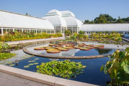 Botanical Garden Discriminated Against Minorities, Jewish Job Seeker: Suit
