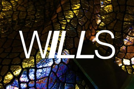WILLS Unveils Debut Track