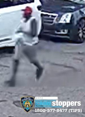 Help Identify An Assault Duo
