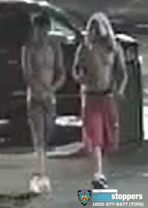 Help Identify A Reckless Endangerment Duo