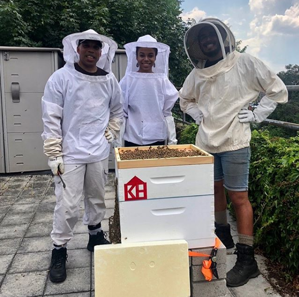 We Have Got Bees!
