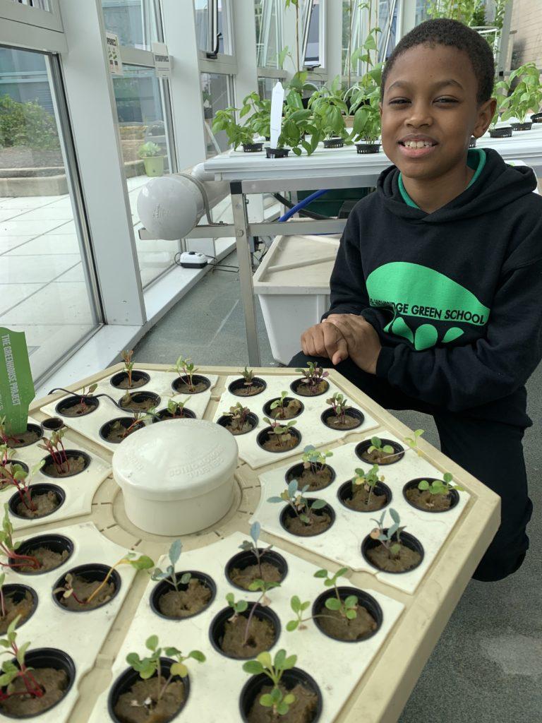 The Highbridge Green School Celebrates Grand Opening Оf Green Classroom