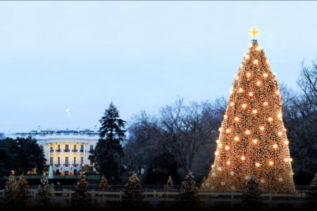 97th National Christmas Tree Lighting