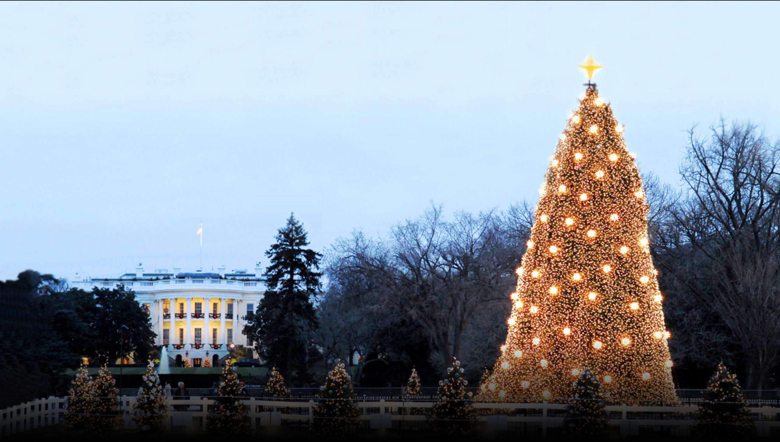 National Christmas Tree 2016