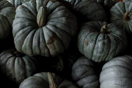 Halloween Spooktacular & Pumpkin Fest