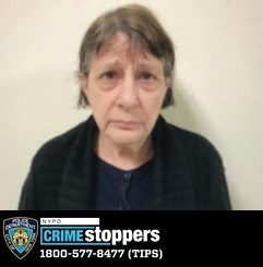 Robyn Knoll, 68, Missing