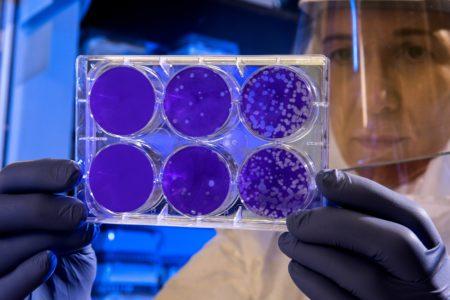 New Coronavirus Case In New York State