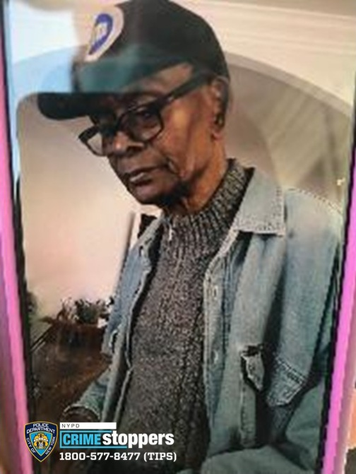 Martin Johnson, 78, Missing