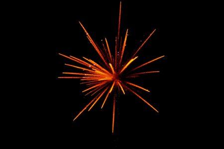 Virtual Bronx Fireworks Extravaganza