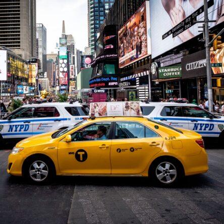 The Bronx Daily   Bronx.com