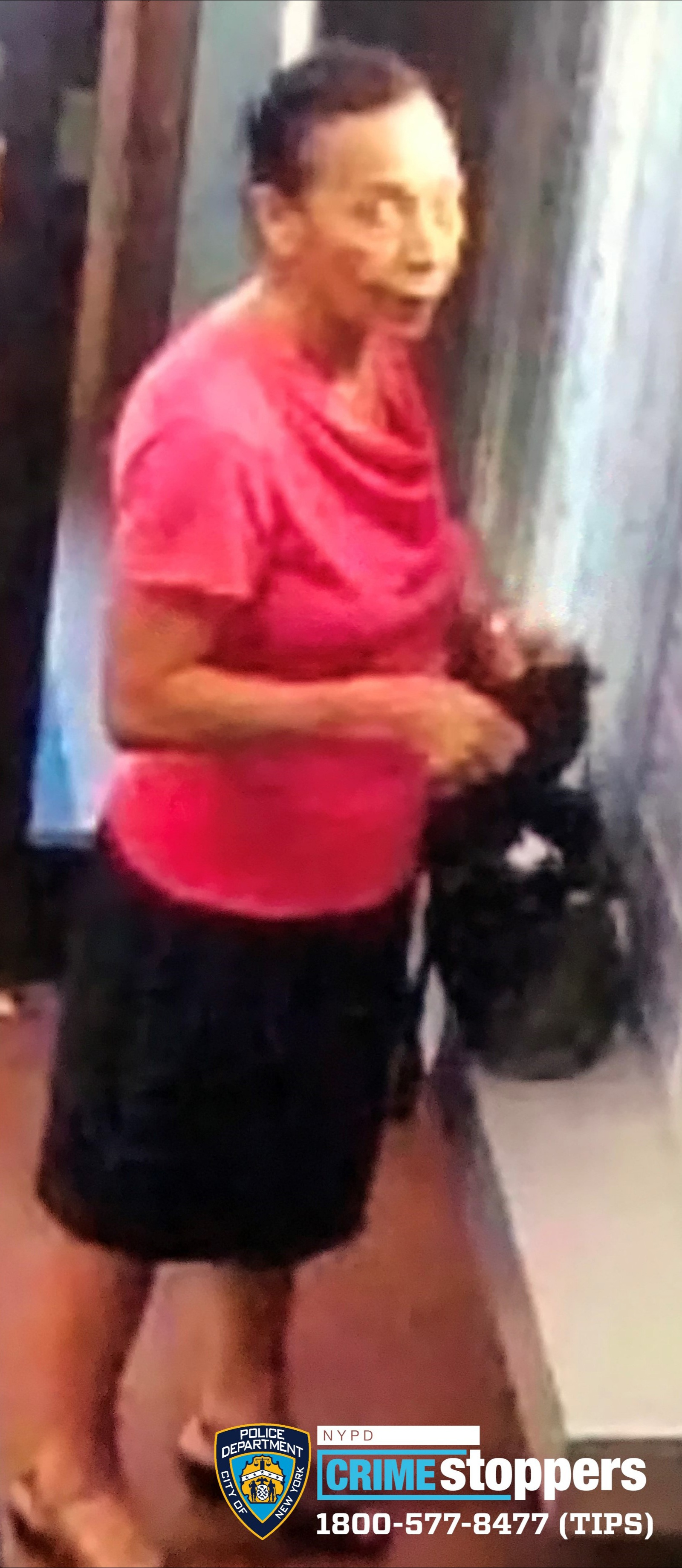 Rosa Lopez, 73, Missing