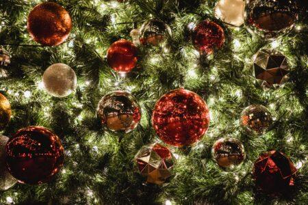Bronx Christmas Tree Lighting