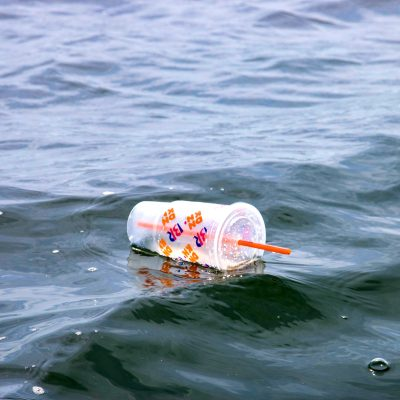 Bill To Limit Plastics Pollution Passes Codes Committee, Now Heads To Rules Committee